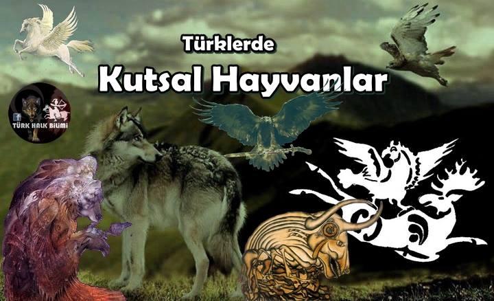 türkler hayvanlar ile ilgili görsel sonucu